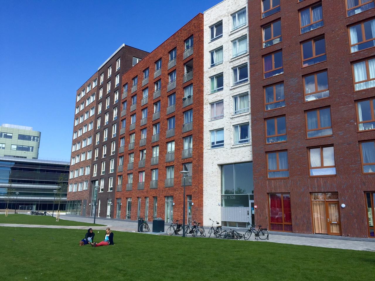 (Y)ours Lammenschanspark Leiden